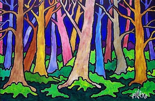 Enchanted Forest feb. by Nick Piliero