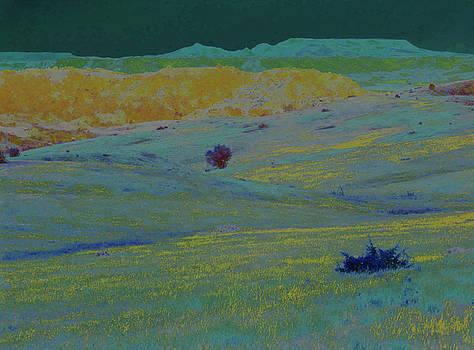 Enchanted Grasslands and Badlands by Cris Fulton