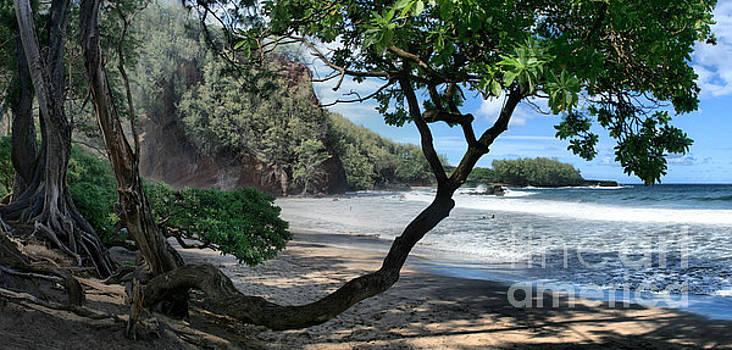 Enchanted Rocks Koki Beach Haneoo Hana Maui Hawaii by Sharon Mau