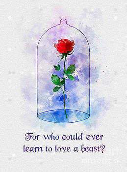 Enchanted Rose Quote by My Inspiration