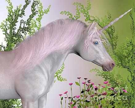 Corey Ford - Enchanted Unicorn