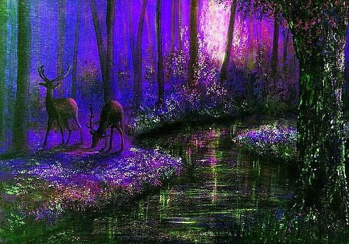 Enchanted Water by Ann Marie Bone