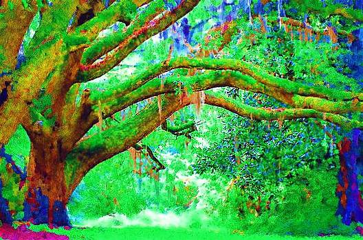 DONNA BENTLEY - Enchanting