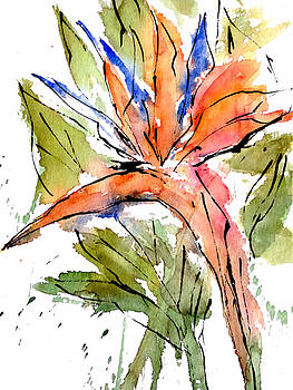 Enclosed in ink-Bird of paradise by Garima Srivastava