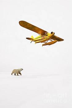 Encounter in Alaska by Edward Fielding