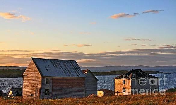 Tatiana Travelways - End of the day in Trinity Bay, Newfoundland