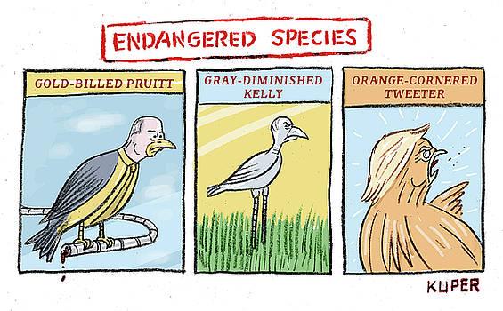 Endangered Species by Peter Kuper
