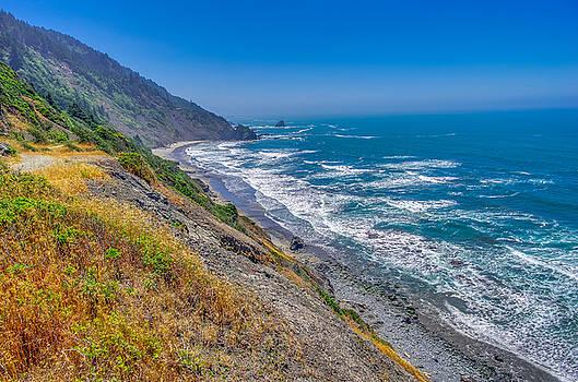 Endert's Beach Trail Redwoods National Park by Scott McGuire