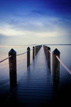 Endless Blue Dreams by Patricia Twardzik