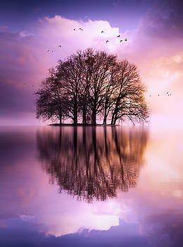 Endless dream by Rob Visser