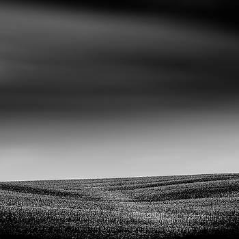 Endless by Gary Harris
