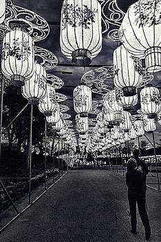 Sharon Popek - Endless Lights Black and White