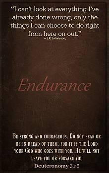 Endurance 316 by David Norman