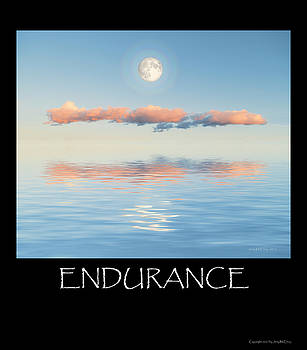 Endurance by Jerry McElroy