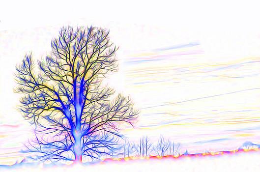 Energy Tree by Beth Sawickie