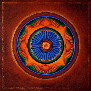 Energy Wheel by Erik Grind
