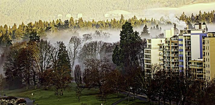English Bay Fog by Sheldon Bilsker