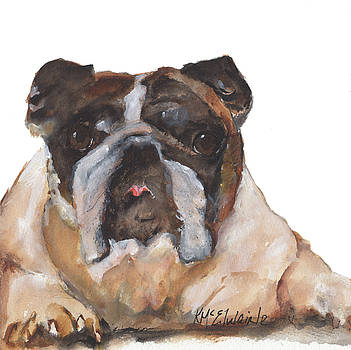 English Bulldog by KMcElwaine by Kathleen McElwaine