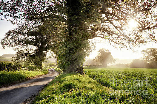 English country road and sunrise by Simon Bratt Photography LRPS