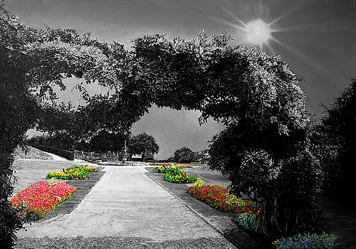 English Garden in Black and White by Michel Angelo Rossi