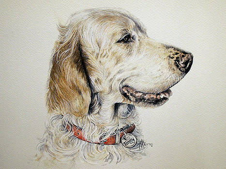 English Setter by Keran Sunaski Gilmore