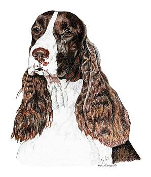 English Springer Spaniel by Kathleen Sepulveda