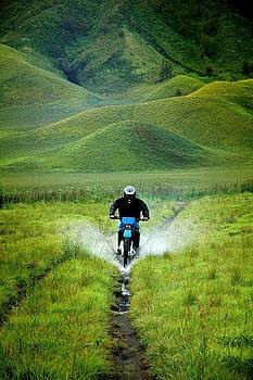 Enjoying Motocross In Savanna by Mario Bennet