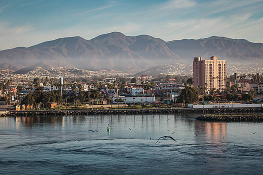 Rosemary Woods-Desert Rose Images - Ensenada Mexico Harbor-IMG_924616