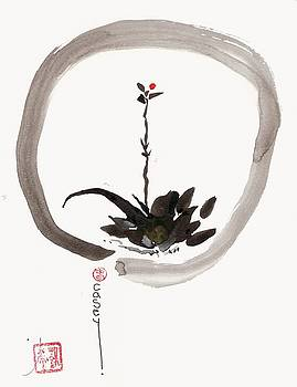 Casey Shannon - Enso Willow Bud