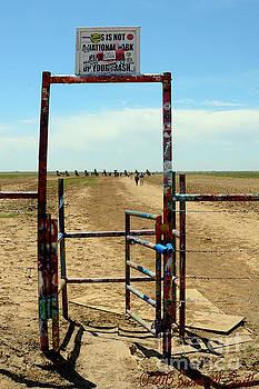Enter Cadillac Ranch by Susan Smith