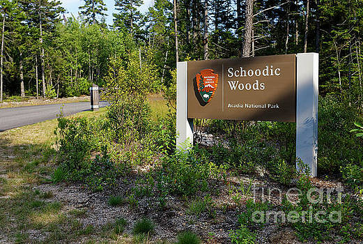 Entrance sign, Schoodic Woods campground, Maine by Kevin Shields