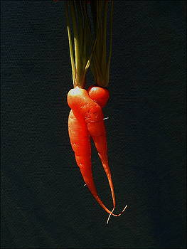 Entwined Carrots by Mark Stevenson
