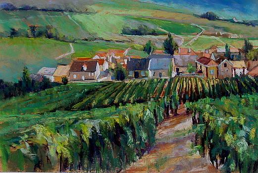 Epernay Vineyards by Virginia Dauth