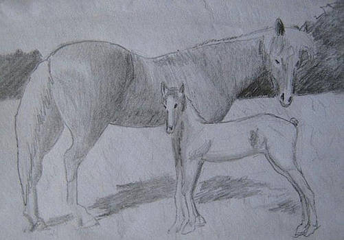 Equus Caballus by SAIGON De Manila