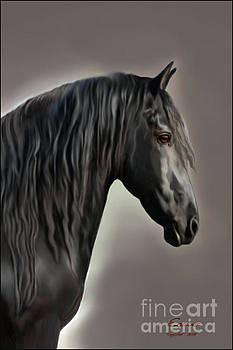 Corey Ford - Equus