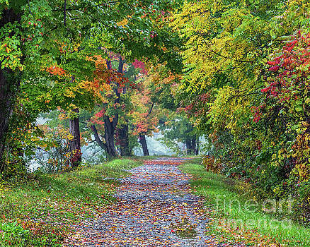 Erie Canal in Fall by Phil Spitze