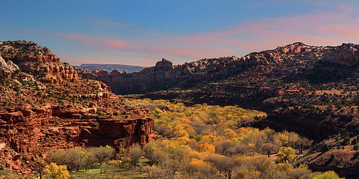 Escalante Canyon Overlook - Utah by Thomas Schoeller