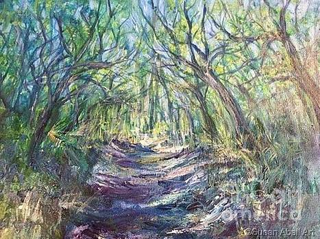 Escape to a Maritime Forest by Susan Abell