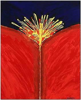 Esplosione Cosmica by Elio Scuderi