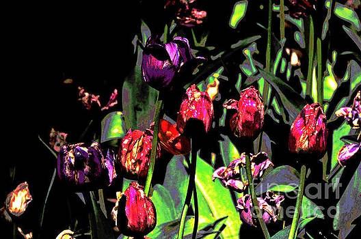 Essence of Tulips 1 by David Frederick