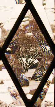 Etched Window View by Anna Villarreal Garbis