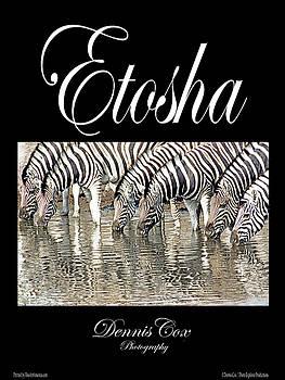 Dennis Cox Photo Explorer - Etosha Travel Poster
