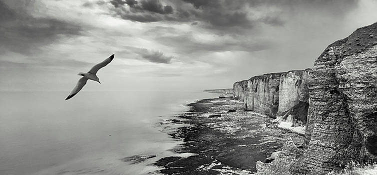 Etretat Chalk Cliffs - Normandy - France by Dirk Wuestenhagen