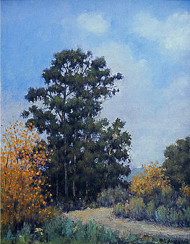 Eucalyptus by Marv Anderson