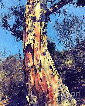 Eucalyptus Tree Bark by John Castell