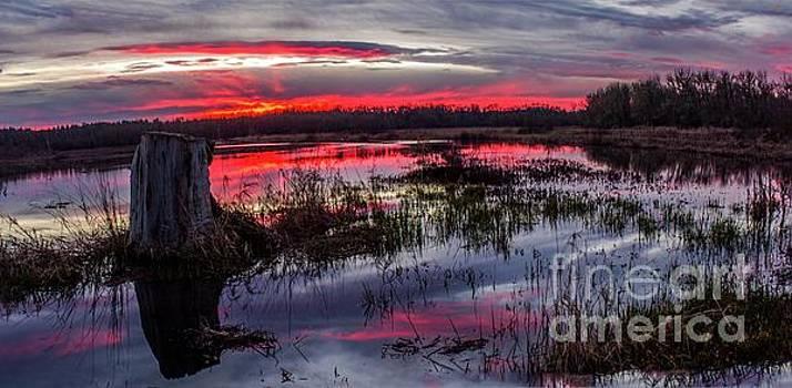Eugene Stump Sunset by Michael Cross