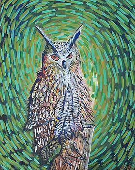 Eurasian Eagle-Owl by Israel Fickett