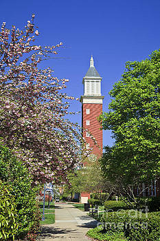 Jill Lang - Evans Clock Tower at Queens University