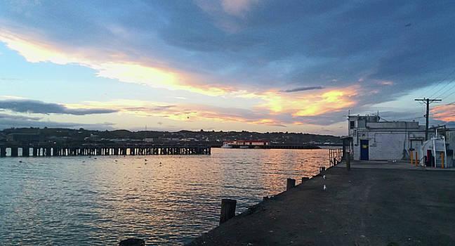 Evening at the Bay by Nareeta Martin