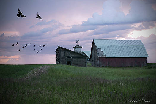 Evening Barn by Melisa Meyers